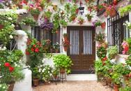 Những ngôi nhà rực rỡ sắc màu nhờ các giỏ hoa