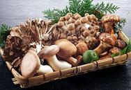Những loại nấm bạn nên ăn vì cực tốt cho sức khỏe