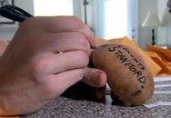 Kiếm 10.000 USD mỗi tháng nhờ giao khoai tây