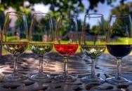 Rượu ăn mòn não người uống ra sao?