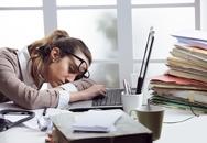 Nên làm gì khi chán ghét công việc hiện tại?