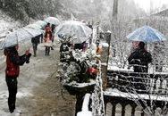 Đêm nay tuyết có thể rơi trên vùng núi cao Sa Pa