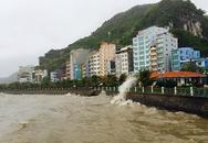 Bão suy yếu, 1 người chết,  du khách thi nhau chụp ảnh sóng gió