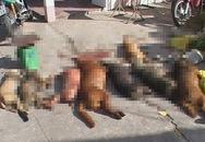 Hai kẻ trộm chó bắn bị thương bảo vệ dân phố