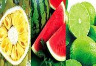 Những loại trái cây không hạt khiến các mẹ Việt săn lùng