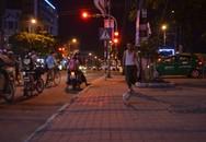 Được huấn luyện, vịt tung tăng dạo phố ở Thái Bình