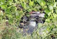 Thoát chết sau khi bị xe máy đè ngập dưới kênh