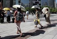 Nắng nóng kinh hoàng, gần 800 người phải nhập viện