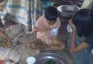 Chị 14 tuổi tự cấy lúa nuôi hai em mồ côi ăn học