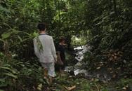 Bắt được nghi phạm thảm sát 4 người trong một gia đình ở Lào Cai