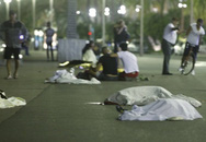 6 người một nhà chết trong vụ tấn công xe tải ở Pháp