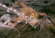 9x không sợ bị ném đá khi chụp ảnh nude bảo vệ môi trường