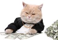 10 lời khuyên của các nhà tỷ phú giúp bạn giàu có trước tuổi 35
