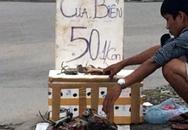 Cua biển 50.000 đồng/con tràn vỉa hè Hà Nội