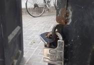 4 thanh niên lạ mặt bị tố cắt cổng nhà dân trộm két