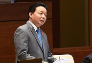 Bộ Tài nguyên chịu hoàn toàn trách nhiệm về sự cố Formosa