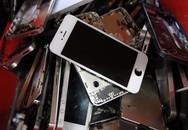 Những chiếc iPhone cũ kết thúc vòng đời ra sao?