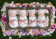 Bốn bé gái đáng yêu trong ca sinh tư cực hiếm