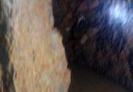 Đào hầm xuyên sang nhà hàng xóm vì nằm mơ