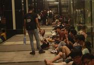 Hàng trăm người chờ thâu đêm để mua giày hiệu