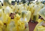Thực hư thông tin áo mưa 10 nghìn đồng chứa chất gây teo não