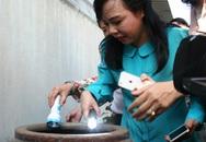 Đề cao vai trò người dân đối với hoạt động phòng bệnh lây truyền từ muỗi