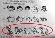Bài toán thi vào lớp 1 ở Trung Quốc thu hút dân mạng