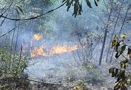 Quảng Ninh: 2,5 ha rừng bị thiêu rụi giữa trưa