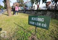 Nam thanh nữ tú chen chân chụp ảnh náo loạn phố Kim Mã