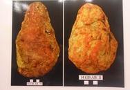 Xem nhiều mẫu đồ đá của người Việt cổ vừa được công bố hôm qua