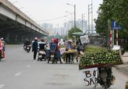 """""""Chợ"""" hoa quả ngang nhiên họp dưới lòng đường"""