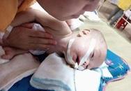 Thắt lòng cha mẹ không dám ngủ vì sợ tỉnh giấc sẽ mất con