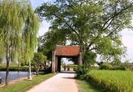 Thâm cung bí sử (86 - 4): Chuyện nhà quan Tế Tửu