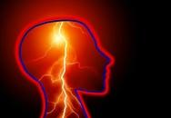 Thử nghiệm tái tạo não cho bệnh nhân chết não