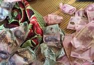 Đi toi 30 triệu đồng vì nhờ con gái sấy tiền cho khô