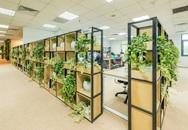 """Lạ lẫm mô hình """"rừng trong văn phòng"""""""