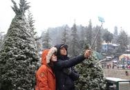 """Du khách thích thú chụp ảnh """"tự sướng'' cùng tuyết"""