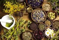 Đẩy lùi bệnh cường giáp và cải thiện giấc ngủ nhờ thảo dược