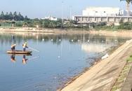 Hà Nội: Hàng tấn cá to chết nổi ở hồ Linh Đàm
