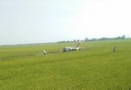 Máy bay quân sự rơi ở Phú Yên, một phi công đã hi sinh