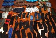 Cô mèo có tật xấu kì lạ: Ăn trộm quần lót nam giới