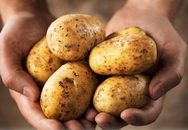 Hại sức khỏe vì ăn khoai tây sai cách