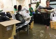Nhiều sao Việt 'méo mặt' vì trận lụt ở Sài Gòn chiều 26/9