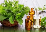 Giảm nỗi lo viêm phụ khoa từ những nguyên liệu thiên nhiên