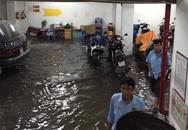 TPHCM: Sau mưa lớn, hầm 6 tòa nhà ngập, xe nổi bồng bềnh