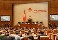 Hôm nay (4/4) bầu các Phó Chủ tịch Quốc hội