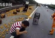 Tài xế khóc nức nở vì xe cam bị lật mà người dân vẫn lao vào hôi của