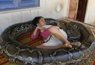 Mẹ dũng cảm tay không bắt trăn khổng lồ cứu con