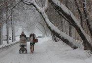 Nhớ về nước Nga, nhớ về tuyết trắng tinh khiết sáng ngời