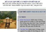 Vận chuyển gỗ pơ mu trái phép tại Yên Bái: Kỷ luật tập thể và 13 cán bộ liên quan